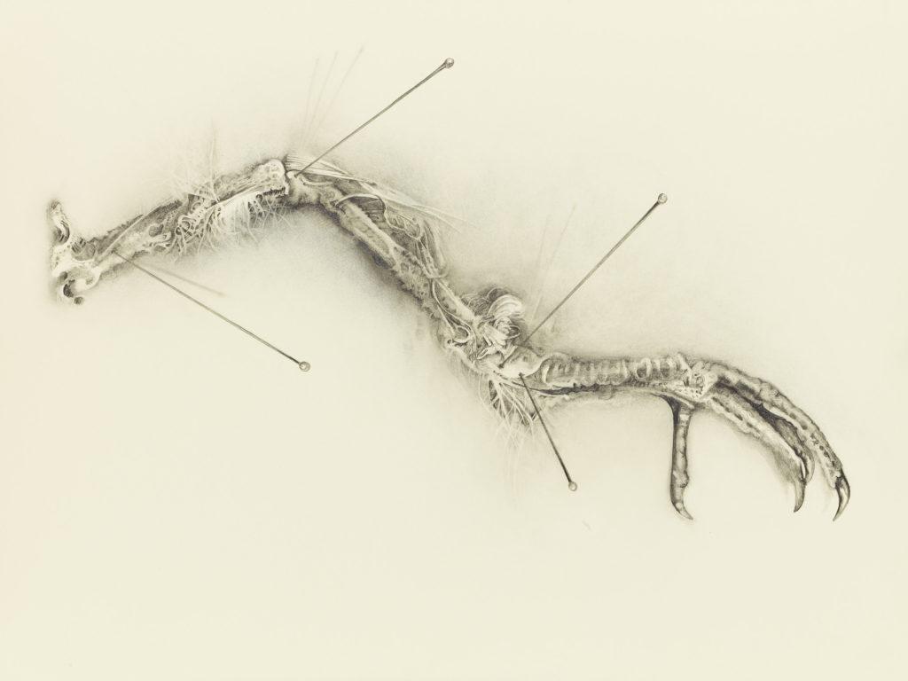 Artwork by Gretchen Scharnagl